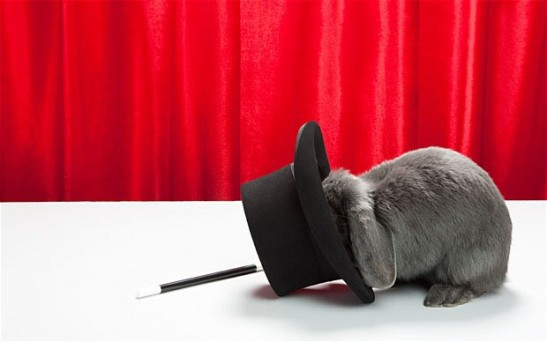 Rabbit with top hat and magic wand