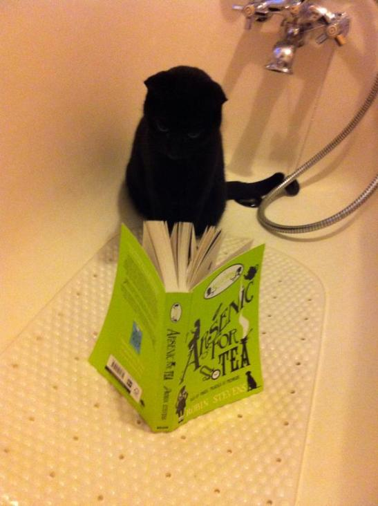 Cat in bath with AFT by Char O'Hara Jan 15-2