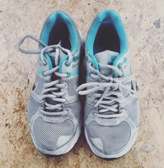 pic-3-trainers